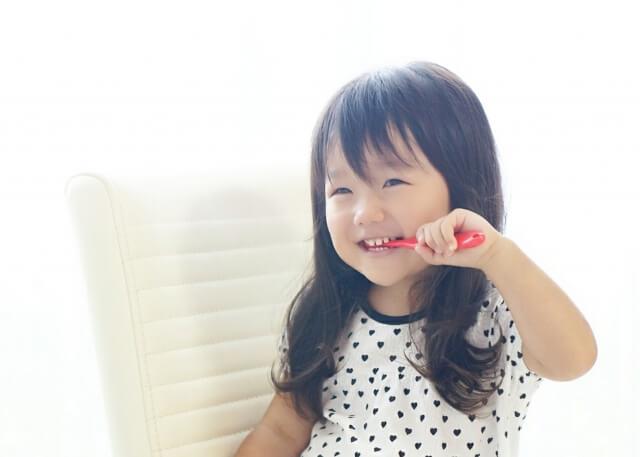 幼稚園の願書 躾と家庭の教育方針はどう違う?